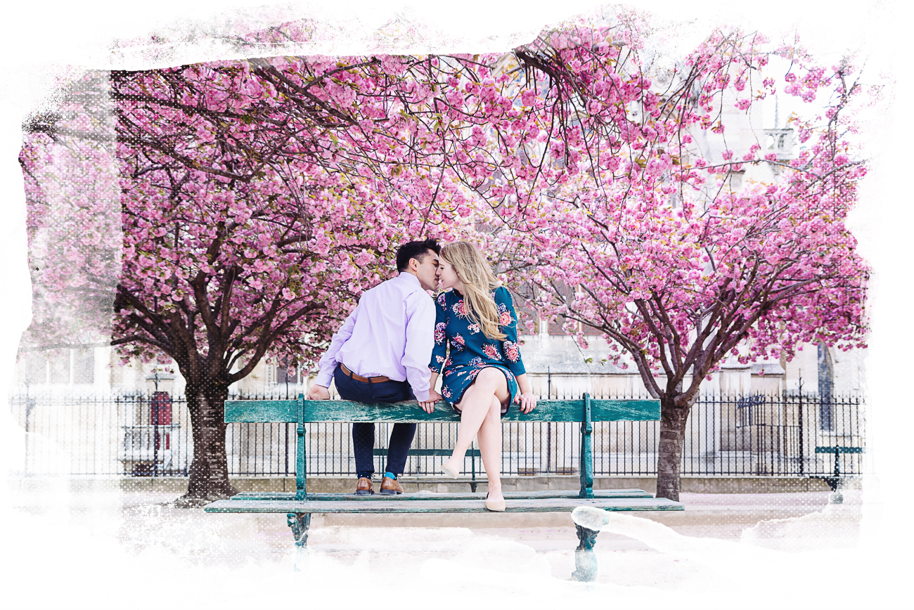 paris engagement pictures after surprise proposal