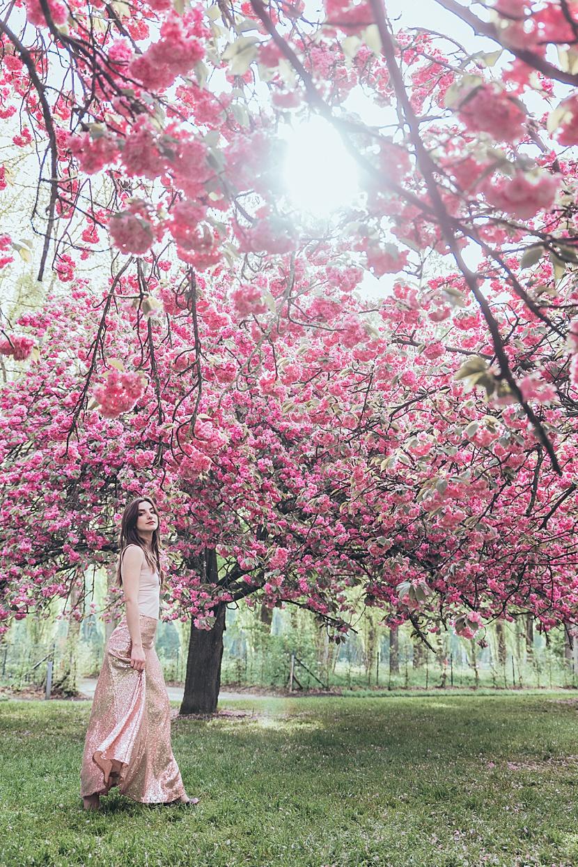 fotos de los cerezos en paris con Gloria Villa en primavera